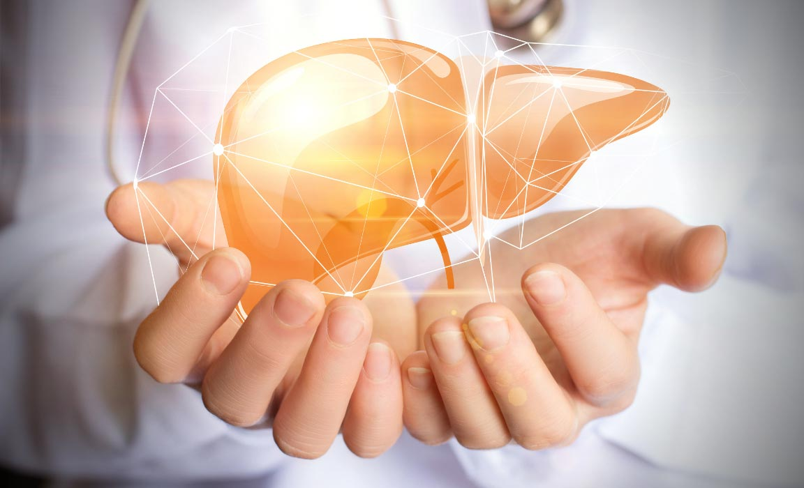 The Liver is Responsible for over 200 Functions in the Body