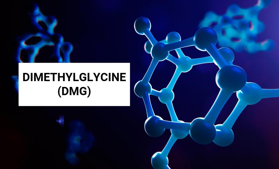 Dimethylglycine, A Simpliest Form of Amino Acid