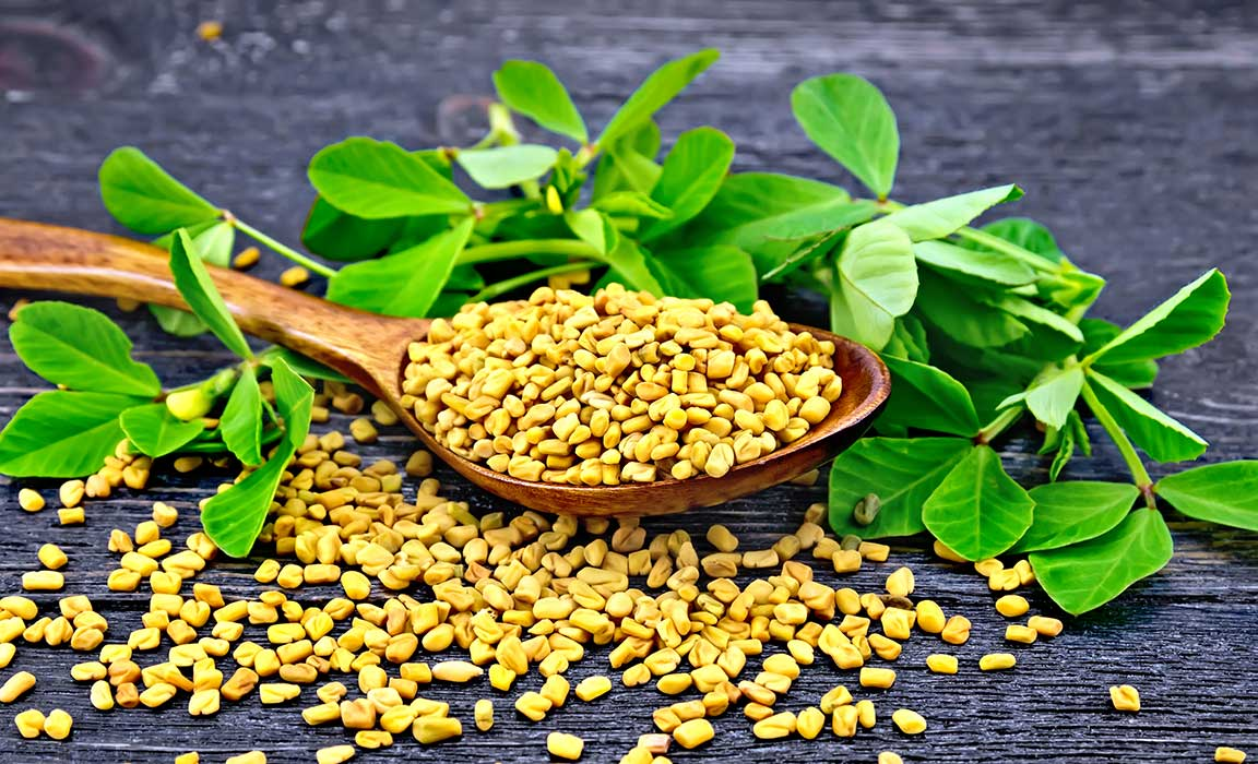 Health Benefits of Fenugreek – Relief from Anemia, Loss of Taste, Fever, Dandruff