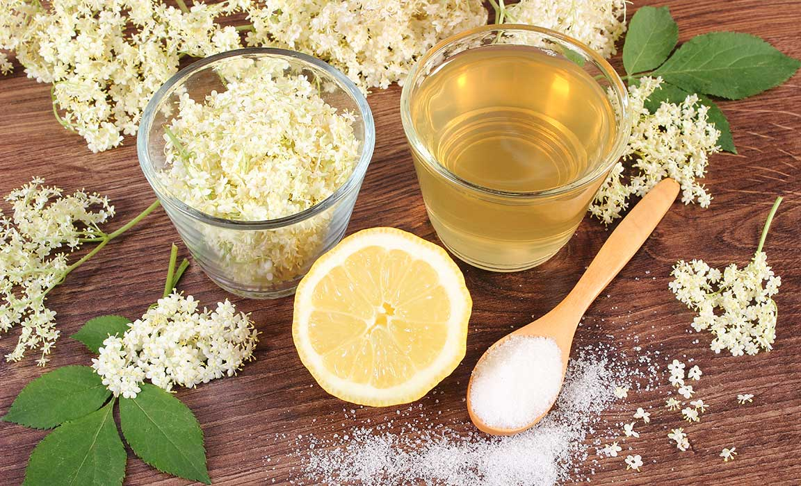 Elderberry boosts our immune system