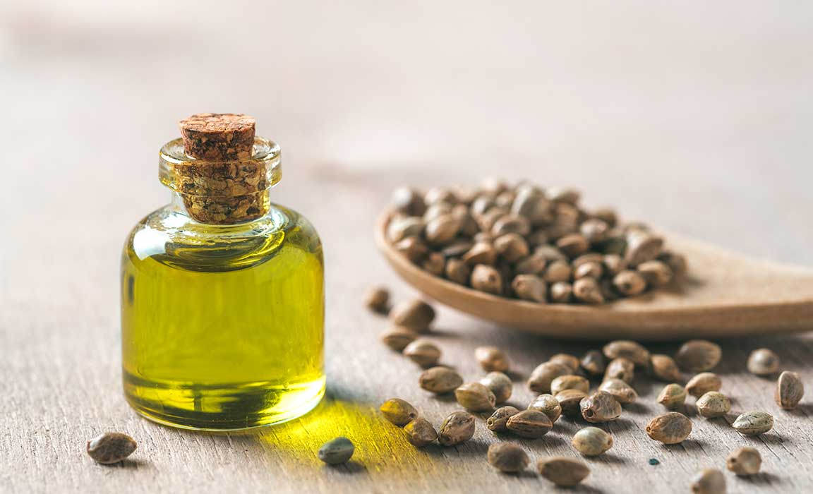 Hemp Seeds are Rich in Omega-3 and Omega-6 fatty Acids