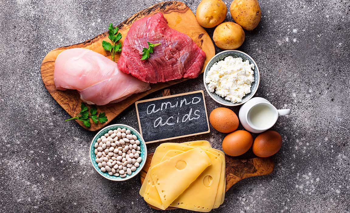 We Gain L-arginine from our Diets
