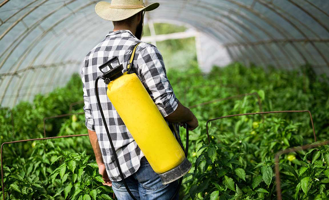 Pesticides are Simply Everywhere and in Everything