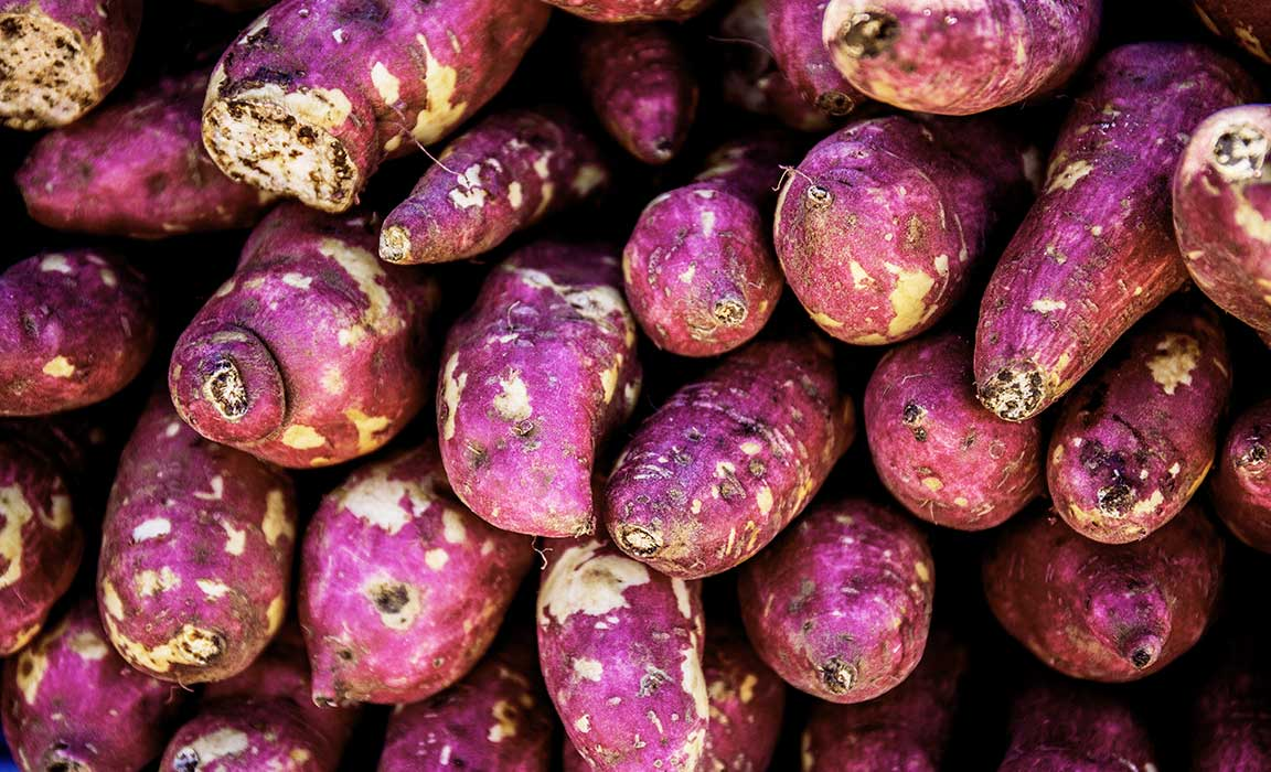 The Natural Form of Progesterone is Derived from Wild Yam?